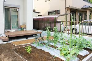 埼玉県草加市 T様邸/ウッドデッキと菜園